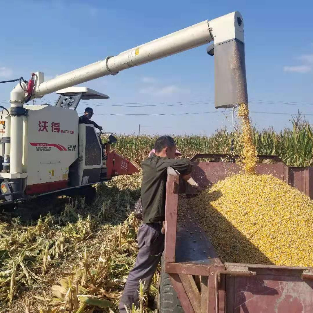 小麦收割机收玉米籽厂家    大道机械