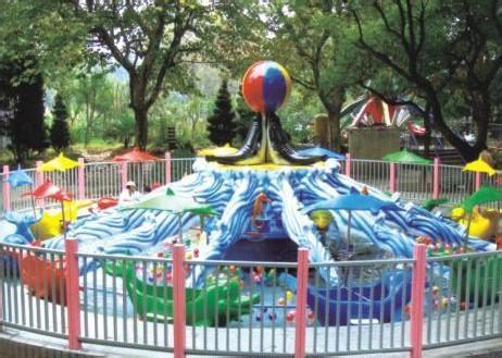 2020大洋精品推荐水上游乐海豚戏水 郑州海豚戏水的好游乐设备示例图13