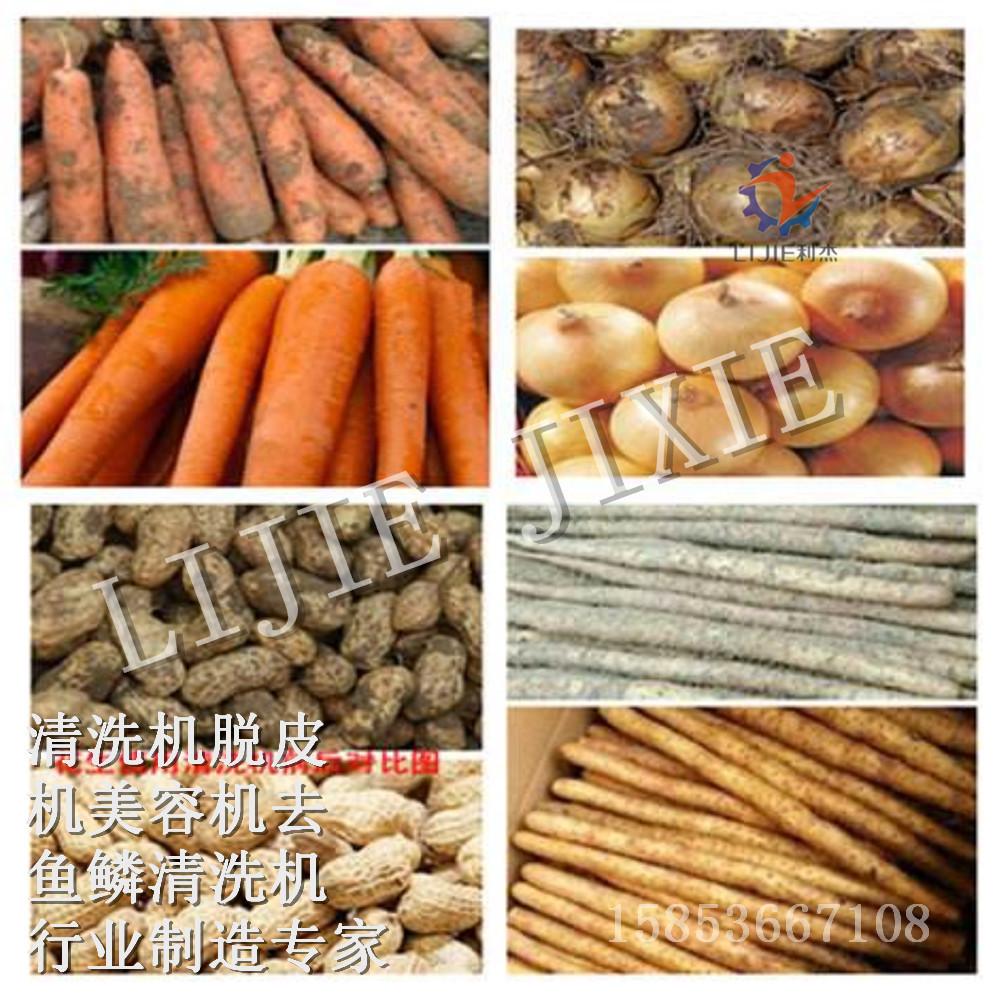 利杰LJ-2000土豆去皮清洗机  土豆去皮机 土豆磨皮机 专业生产根茎类蔬菜清洗机 胡萝卜清洗机 洋葱毛辊去皮机示例图3